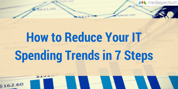 How to Reduce Your IT Spending Trends in 7 Steps | Mediaspectrum